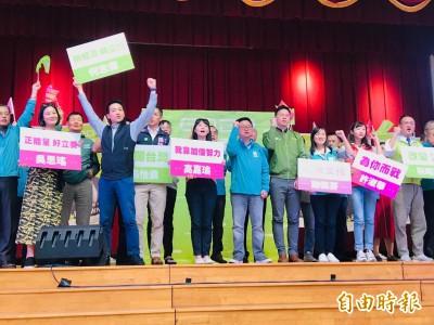 綠營台北市立委參選人聯合造勢 羅文嘉授顧台三步驟