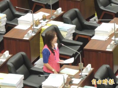 燒聲...還是要質詢啦 國民黨高市議員李雅靜低分貝監督市政