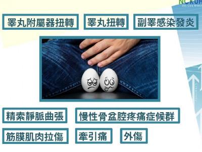 「蛋蛋」的危機! 精索扭轉若未即時處理恐須切除