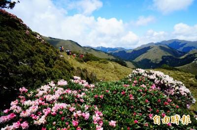 蒙特婁旅展 台灣參展力推「山脈旅遊」