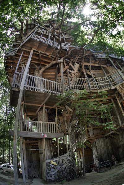 花12年打造「世界最大樹屋」焚毀 原設計師嘆:是種解脫