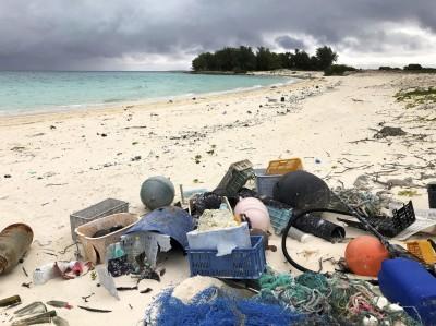驚! 中途島淪為垃圾集中地 海鳥誤食肚裡全是塑膠