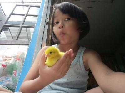 放下手機、養小雞!印尼為改善兒童手機成癮出招