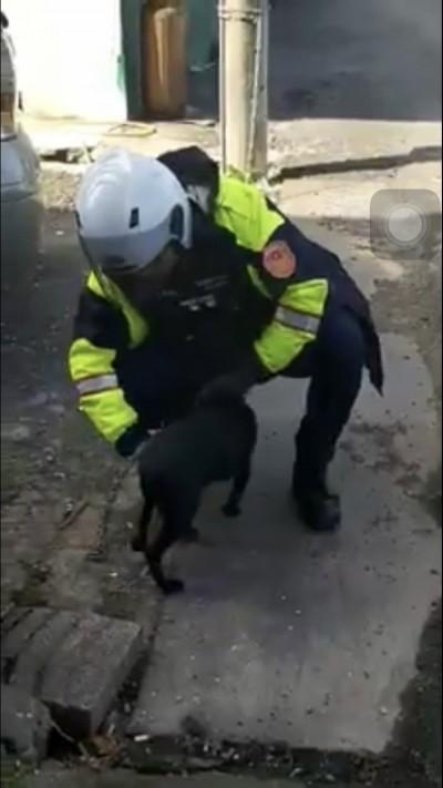 畫面曝光!桃園工廠大火 小黑狗栓在旁邊害怕發抖2警搶救