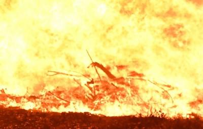 牧師誤將汽油當水 奈及利亞1男信徒意外被燒死