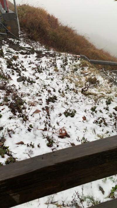 合歡山雪停 賞雪客一路仍塞車上山:看殘雪也值得