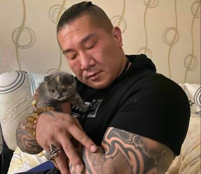 被小貓咪征服了! 館長曬閉眼抱貓照 網笑喊:真鐵漢!