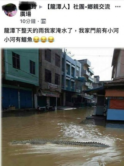 龍潭淹水有鱷魚出沒?警:造成恐慌觸法