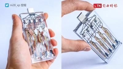 生物技術大躍進? 日本網友做出「魚腦外接硬碟」