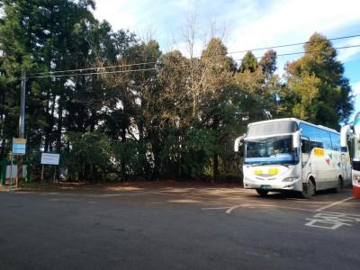 等了20年!台中866路公車 從福壽農場延伸至天池達觀亭