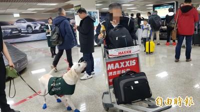 護國神犬再發威!松山機場飛機餐含豬肉逃不掉