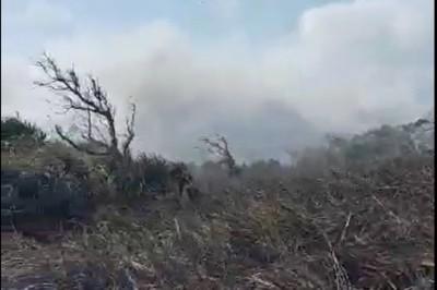 墾丁龍坑保護區周邊大火下午關閉 遊客臨時取消行程