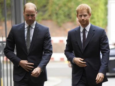 梅根脫英?王子兄弟否認「霸凌」 英王室苦求解方