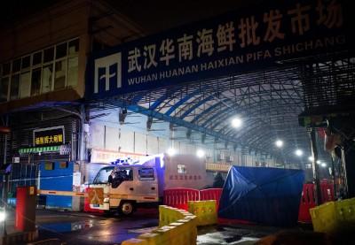 武漢肺炎遇中國春運 香港學者:疫情正擴散 憂爆感染潮
