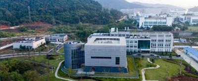 武漢肺炎》病毒到底哪來?中國專家堅稱:絕非實驗室外洩