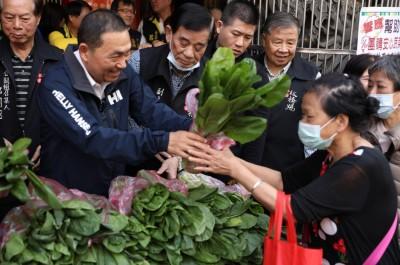 武漢肺炎》營養午餐蔬菜滯銷 新北祭「雙菜雙保」
