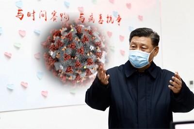 武漢肺炎》報台灣遭打壓 德國媒體:中國危害全球健康