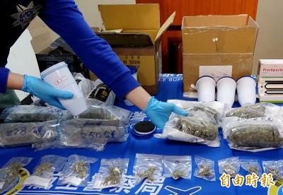 濾水器濾心夾藏大麻花闖關 國際販毒集團4嫌被逮