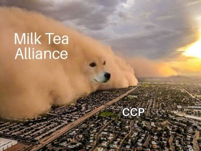 泰港台「奶茶聯盟」 尋盟友發聲爭取湄公河水權