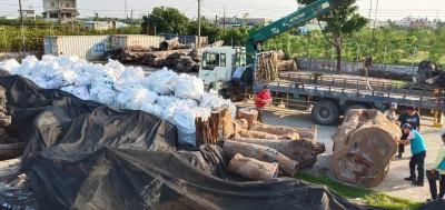 屏林處、檢警瓦解一條龍山老鼠 第二波查扣69噸肖楠、牛樟