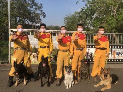 退役搜救犬認養創新高 盼好狗命、謝絕「二度就業」
