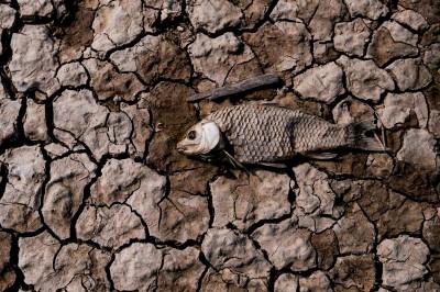200座水庫乾涸!中國雲南遭遇近10年最嚴重旱災