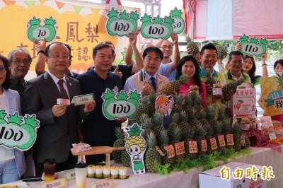 用行動挺農 台南山上工業區20家企業認購1000箱鳳梨