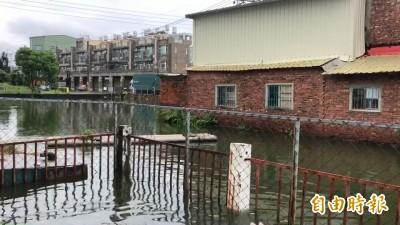豪大雨狂炸花壇金墩街水淹小腿  住戶枯站出不了門