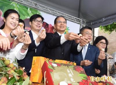 罷韓將登場 陳其邁:回高雄行使公民權