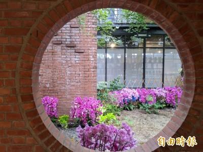 花卉景觀吸睛成打卡熱點 雲林有3展示地