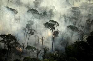 健康網》亞馬遜大火高峰期到來 專家:恐增加武肺傳播風險