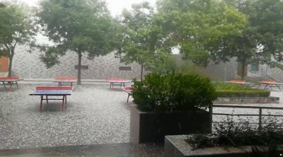 中國陝西冰雹接大雨!玉米、穀物等農作物受損