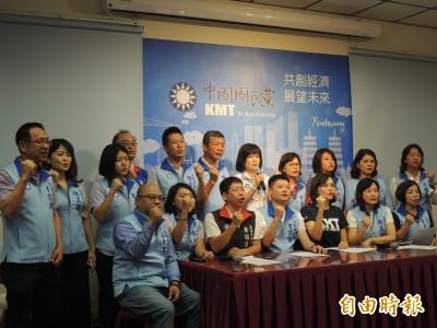 藍委佔議場》高市議會國民黨團聲援 提反對陳菊三大理由