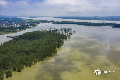 旱、洪災同步而至!中國暴雨34天近2千萬人受災、旱災民逾千萬