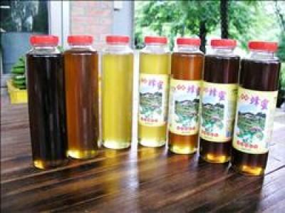 三芝牧蜂農莊採收的龍眼蜜,南部的顏色較深被稱為「黑蜂蜜」(左一),中部所採的顏色較淡(左二),荔枝蜜顏色更淡(左三)。(記者黃其豪攝)