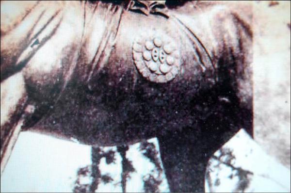 務實馬早期照片裡,馬腹有處圓形圖樣。(記者王榮祥翻攝自國家文化資料庫)