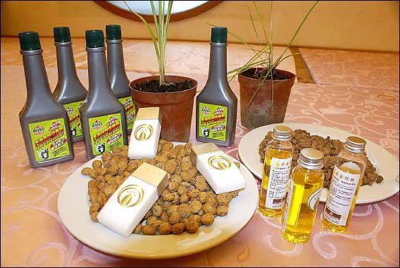 「黃金核桃」的外觀及目前已經研發出的副產品,包括生質柴油防曬乳等。(記者楊宜中攝)