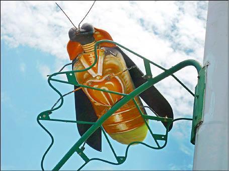 新竹縣竹東鎮民權路整排「螢火蟲」造型的路燈,入夜後發光,別有一番趣味﹔但大型的火金姑卻嚇到小朋友,大叫「蟑螂」,「小強路」的封號不逕自走。(記者廖雪茹攝)