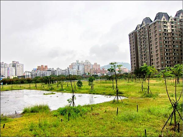 台北大學特定區安置住宅預定地,經過十多年,仍是荒煙蔓草。(記者蔡偉祺攝)