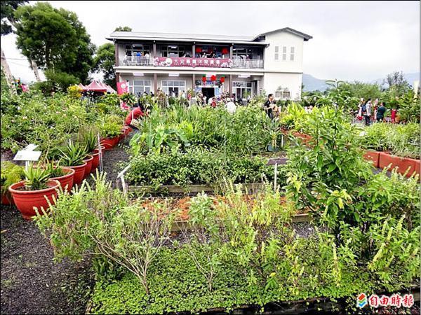 大安藥園休閒農場昨天開幕,園裡有四、五百種藥草,歡迎參觀。(記者游明金攝)