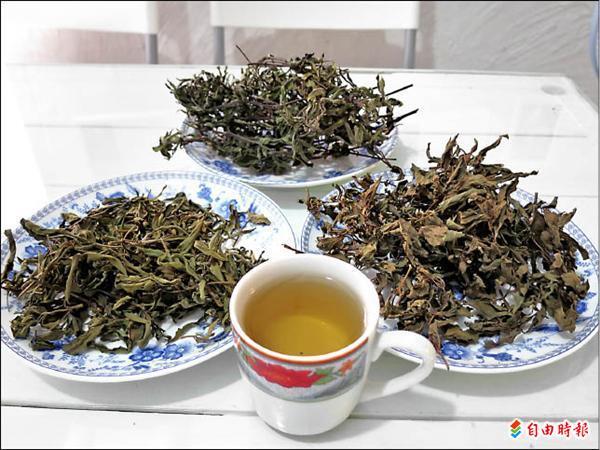 蔡以倫教你泡香草茶。(記者鍾麗華攝)