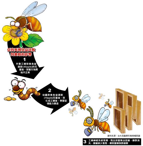 亞致死劑量益達胺對蜜蜂的影響