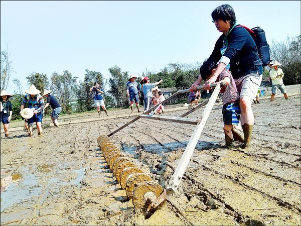 248農學市集是個生態農業計畫,串聯農民以友善環境方式種植農作。(圖:248農學市集提供)