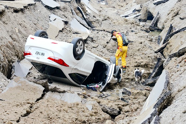 A rescue worker and his dog search for survivors after gas explosions in Kaohsiung on Friday. Photo: AFP/Sam Yeh