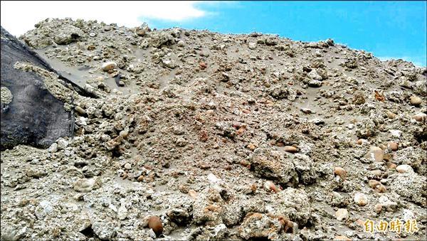 被挖除堆放在現場的藻礁比人還高。(記者謝武雄攝)