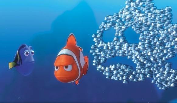 小丑魚生存環境遭受嚴重破壞,美國正考慮將小丑魚列為瀕危物種加以保護。(圖擷取自YouTube)