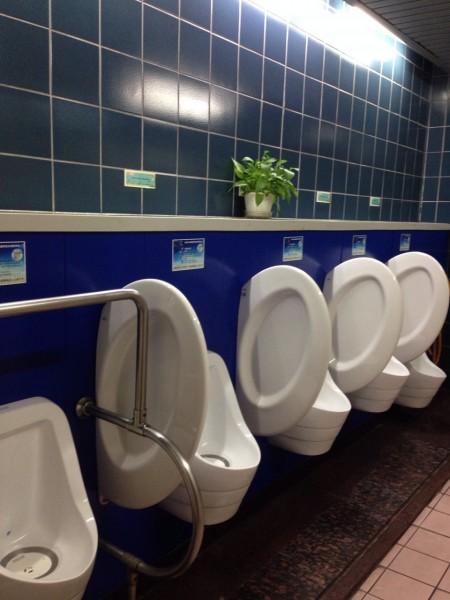 市議員林世宗質疑,北市府地下1樓廁所狀況良好,為何要花1077萬元預算整修?(市議員林世宗研究室提供)