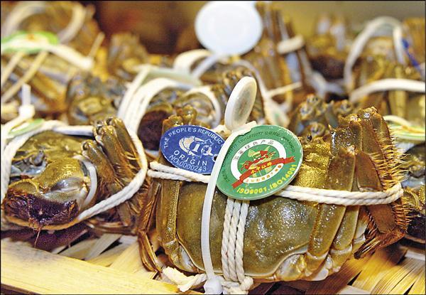桃園定碁公司進口的兩批中國大閘蟹,都驗出氯黴素,蟹身上都掛有品質保證的大閘蟹指環,進口盤商批中國管理形同虛設。(資料照)