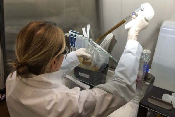 美國非營利組織OpenBiome成立了一間「糞便銀行」,負責蒐集糞便做測試,且會支付給提供糞便的人40元美金(1200元台幣)。(照片擷自METRO)