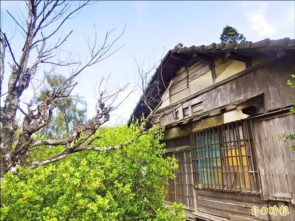 中石化安順廠宿舍區全區指定為古蹟保留,學界與地方人士舉雙手歡迎。(記者蔡文居攝)